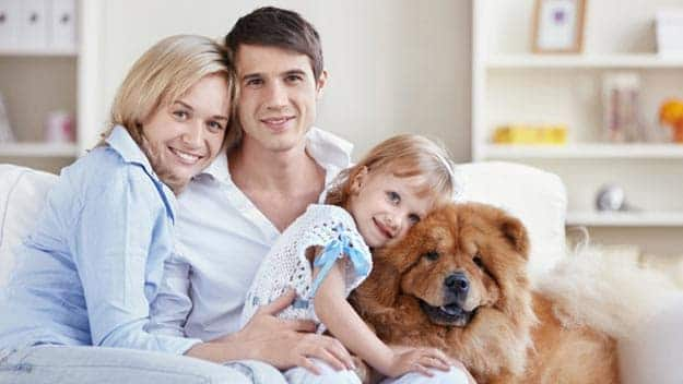 Wills & Trusts dog-young-family Direct Wills Spalding